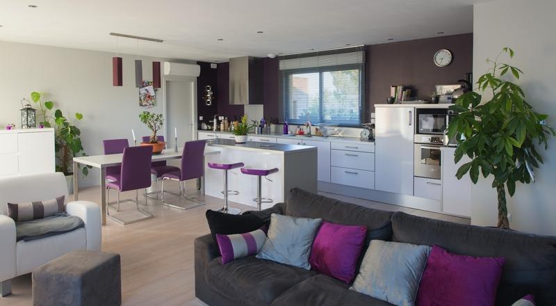 maison bois contemporaine newport par ami bois toulouse france construire tendance. Black Bedroom Furniture Sets. Home Design Ideas