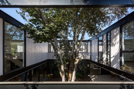 Arbre intérieur cour - House-LG10182 par Brugnoli Asociados Arquitectos - Santiago, Chili