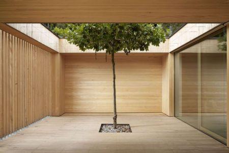 Cour intérieure & chêne - Rock-House par Helena Weber - Vorarlberg, Autriche