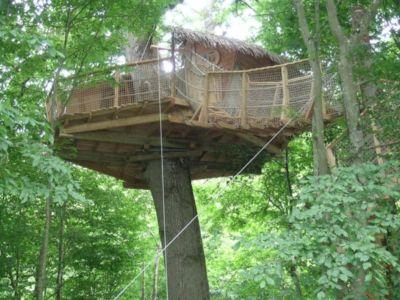 La cabane nid de cassandre Parc du chateau de Courtalain (28) - France