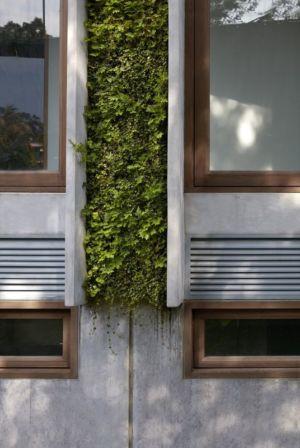 Ouvertures vitrées - Astrid-Hill-House par Tsao & McKown Architects - Singapour