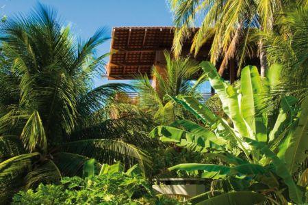végétation Tropicale - Casa Tropical par Camarim - Mundau, Brézil