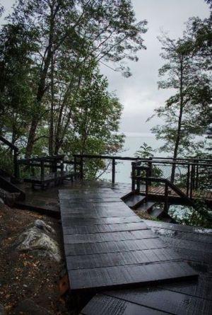 accès en bois - House-Todos-Los-Santos par Apio Arquitectos - Puerto Montt, Chili