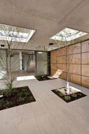 arbres en terrasse - Casa Pedro par VDV ARQ - Buenos Aires, Argentine