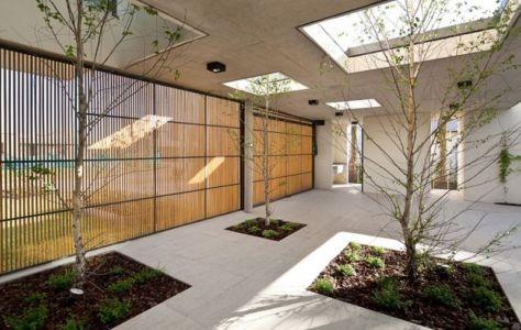 arbres préservés en terrasse - Casa Pedro par VDV ARQ - Buenos Aires, Argentine