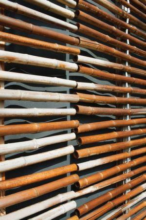 bardage bambou - Witzmann résidence par Karawitz Architecture - France - Photo Nicholas Calcott