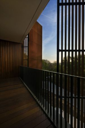 brise-soleil - East Windsor Residence par Alterstudio - Austin, Usa - Photo Paul Finkel