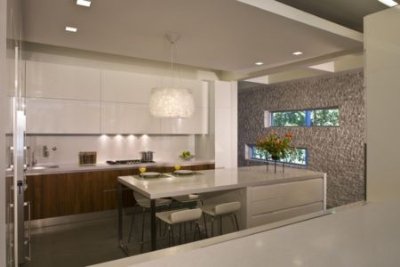 cuisine - Boano Lowensitein Residence par KZ Architecture - Miami, Usa