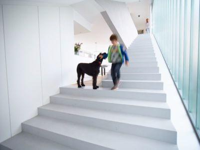 escalier accès niveau supérieur - MaHouse par Marc Formes - France