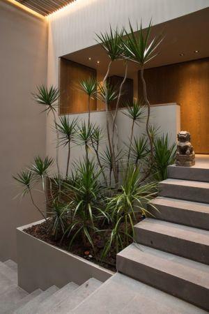 escalier façade entrée - Barrancas House par Ezequielfarca Architecture & Design - Mexico, Mexique