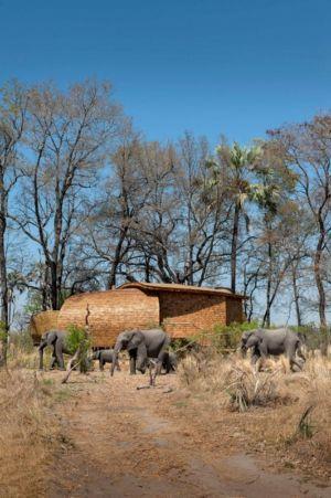 façade arrière & savane - safari-lodge par Michaelis Boyd et Nick Plewman - Delta de l'Okavango, Bostwana