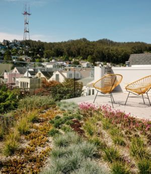 terrasse toiture - house-young-family par Feldman Architecture - San Francisco, USA