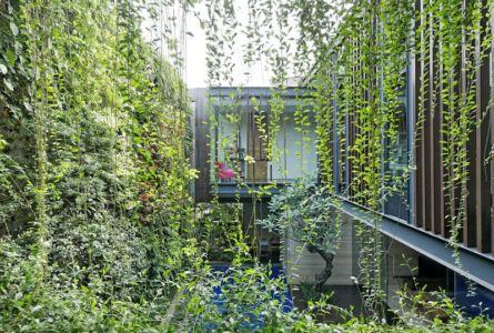 façade intérieure végétalisée - Ben House-GP par Wahana Architects - Jakarta, Indonésie