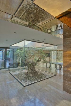 hall entrée et olivier - Touristic Villa 'S, M, L' par studio SYNTHESIS - Tivat, Montenegro
