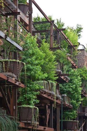 jardin luxuriant Façade - House Green par Luciano - Turin, Italie