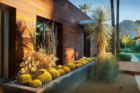 jardin de cactus - F-5 Residence par Studio AR+D Architects - Indian Wells, Usa
