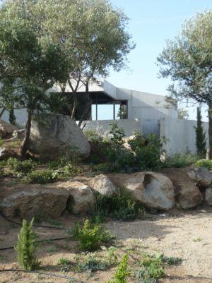 jardin rocailleux - maisons contemporaines par Bona-Lemercier - Monticello, France