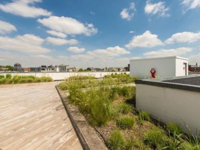 jardin - vue à 360 degrés - Bruxelles, Belgique