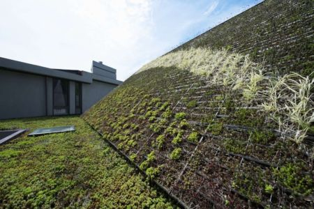 mur végétalisé - Sayres House and Hanging Gardens par Maziar Behrooz Architecture - East Hampton, Usa