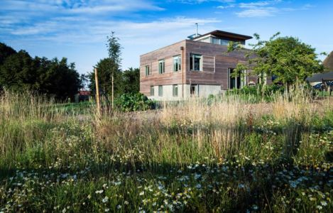 nature environnante - Stackyard House par Mole Architects - Palgrave, Royaume-Uni