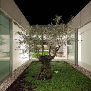 olivier de nuit - Olive House par LOG-URBIS - Pag, Croatie