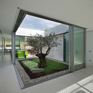 olivier et patio - Olive House par LOG-URBIS - Pag, Croatie