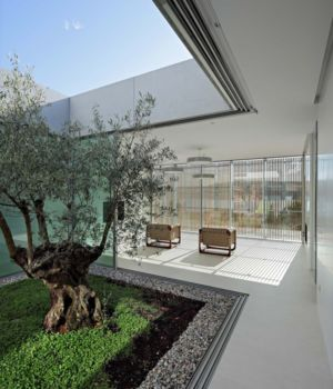 olivier et salon - Olive House par LOG-URBIS - Pag, Croatie