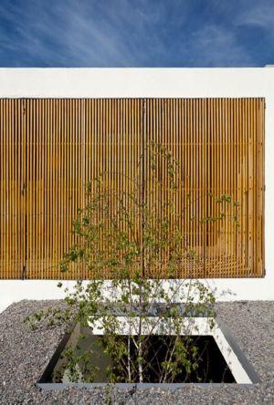 ouvertures pour arbres dans toiture - Casa Pedro par VDV ARQ - Buenos Aires, Argentine