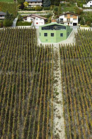 panorama sur vignes - Maison Iseli par François Meyer architecture - Venthôme, Suisse
