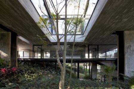 patio arboré - LM Residence par Marcos Bertoldi Arquitetos - Campo Comprido, Brésil