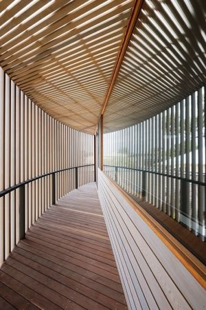 patio extérieur - maison bois contemporaine par Jackson Clements Burrows - Barwon Heads - Australie - Photos John Gollings