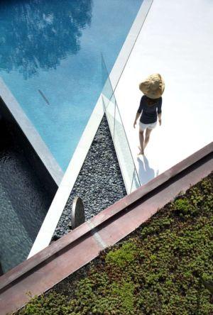 piscine et toiture végétalisée - Sayres House and Hanging Gardens par Maziar Behrooz Architecture - East Hampton, Usa