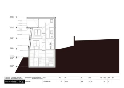 plan 2D section1 - Saint-Ange-Residency par Studio Odile Decq - Seyssins, France