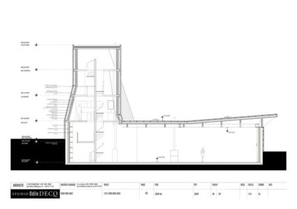 plan 2D section2 - Saint-Ange-Residency par Studio Odile Decq - Seyssins, France