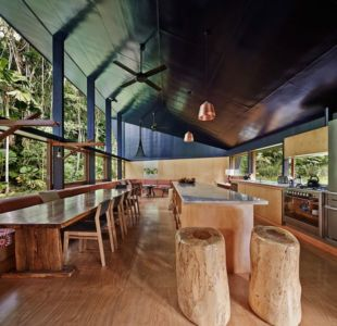 séjour & cuisine - house-tropical par m3architecture - Queensland - Australie