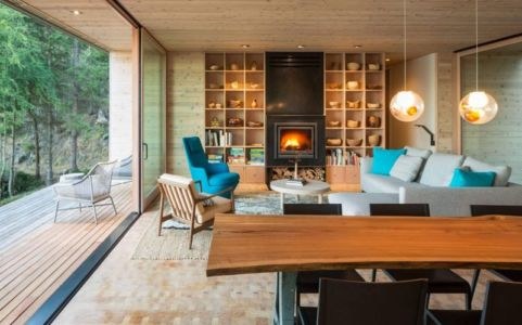 séjour-salon & cheminée design - Woodsy-Retreat par Heliotrope Architects - Washington, USA