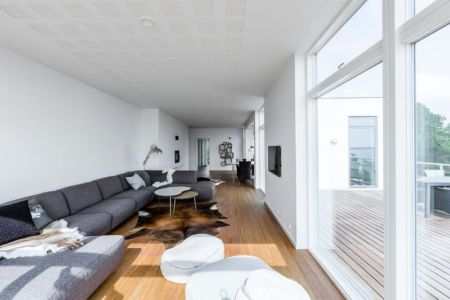salon - maison exclusive par Skanlux - Danemark