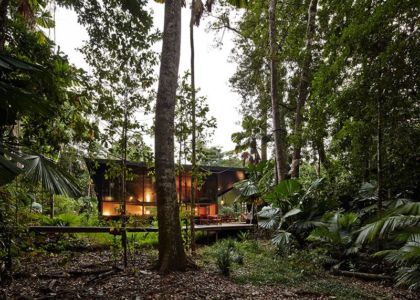 site en pleine forêt - house-tropical par m3architecture - Queensland - Australie