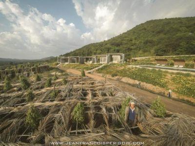 site plantation - La-Plantation par Acyc Sarl - Kampot, Cambodge
