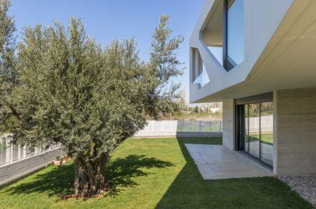terrasse et olivier - Paradox house par Klab architecture - Athènes, Grèce