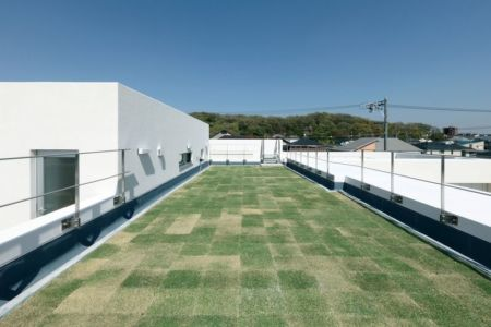 terrasse toit gazonnée - YAM par ks-architects - Nagoya, Japon