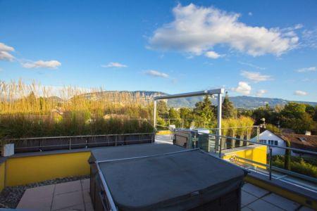 toiture terrasse et végétalisation - Barbo House par Ralph Büeler (Bend Group) - Genève, Suisse