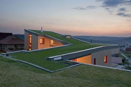 toiture végétalisée - Hajdo-House par Blipsz Architecture - Odorheiu Secuiesc, Roumanie