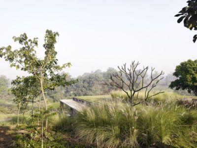 toiture végétalisée - Riparian-House - Architecture Brio - Karjat, Inde