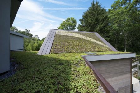 toiture végétalisée - Sayres House and Hanging Gardens par Maziar Behrooz Architecture - East Hampton, Usa