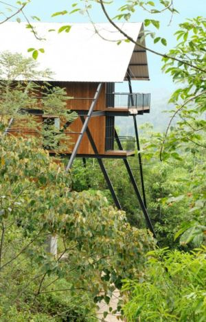 végétation - bungalow par narein-perera - Matugama, Sri Lanka