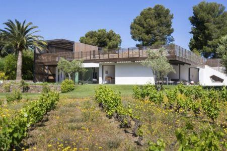 vignes façade terrasse - Maison L2 par Vincent Coste - Saint-Tropez, France