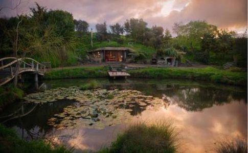 vue de l'étang - Underhill par Graham Hannah à Waikato, Nouvelle-Zélande