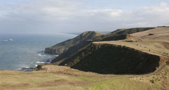 vue panoramique océan - Modern farmhouse par Pattersons - Muriwai, Nouvelle-Zélande