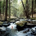 rivière près de la cabane en bois écologique - Yulan - USA - Craig Petrasek